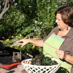 barbara-roasting-peppers